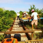 bamboo train at work